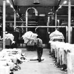 crespidadda_schezen_1978_fabbrica_08